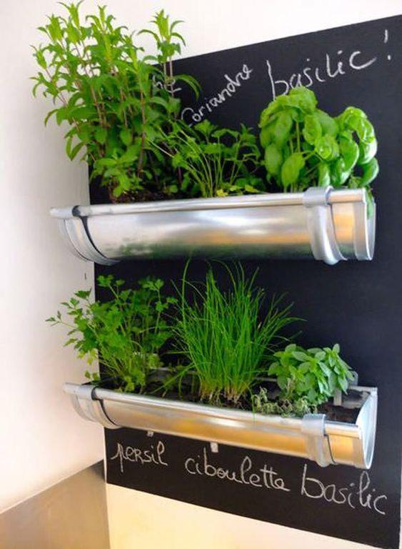 Regenwasserabläufe wiederverwenden – Ein smarter Kräutergarten