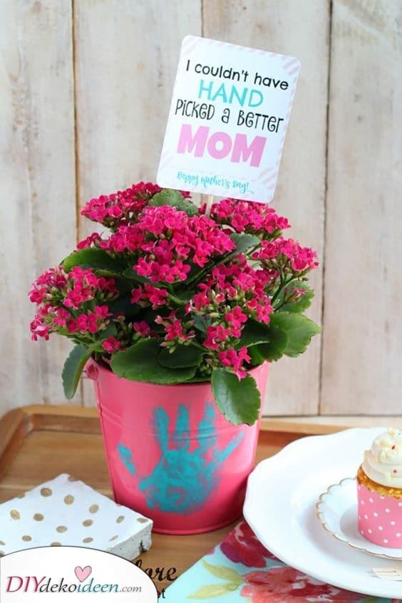 Süße Topfpflanzen – Für Ihre Mutter