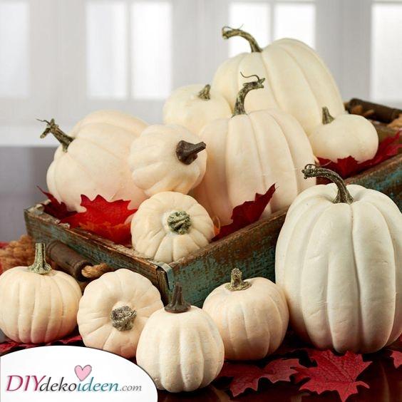 Eine Holzkiste auffüllen – Halloween Dekoration mit Kürbis